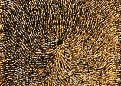 NR-24-Fussilli-Gold-70x70 cm - Nudeln auf Leinwand-goldbronziert